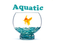 order aquatic supplies
